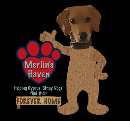 Merlin's Haven Dog Rescue Cyprus